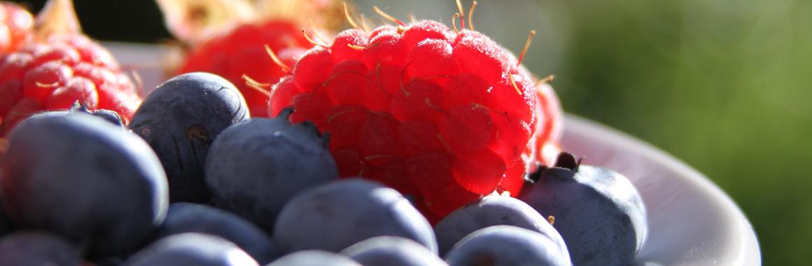 Healthy ayurvedic food