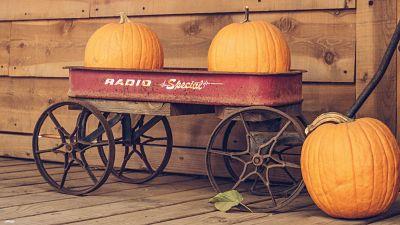 Pumpkins in trolley