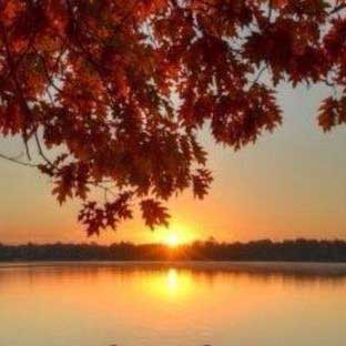 avatar-autumn-sunset