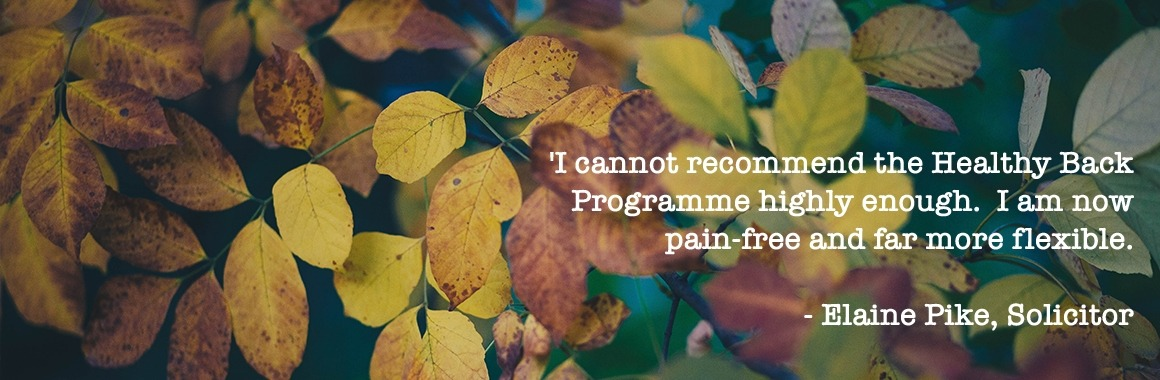 Healthy Back Programme - Elaine Pike, Solicitor quote